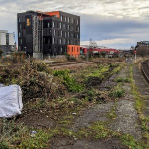 Middlesbrough overgrown platform 2.jpg